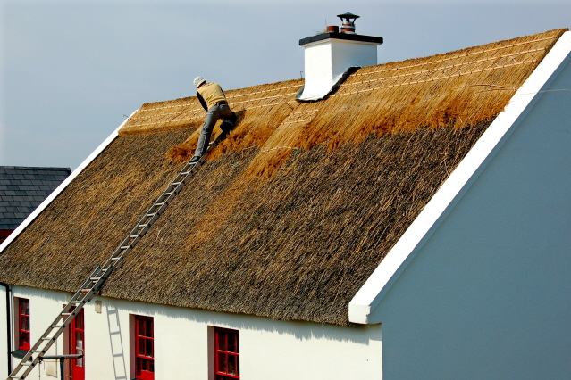 maintenance of the roofs